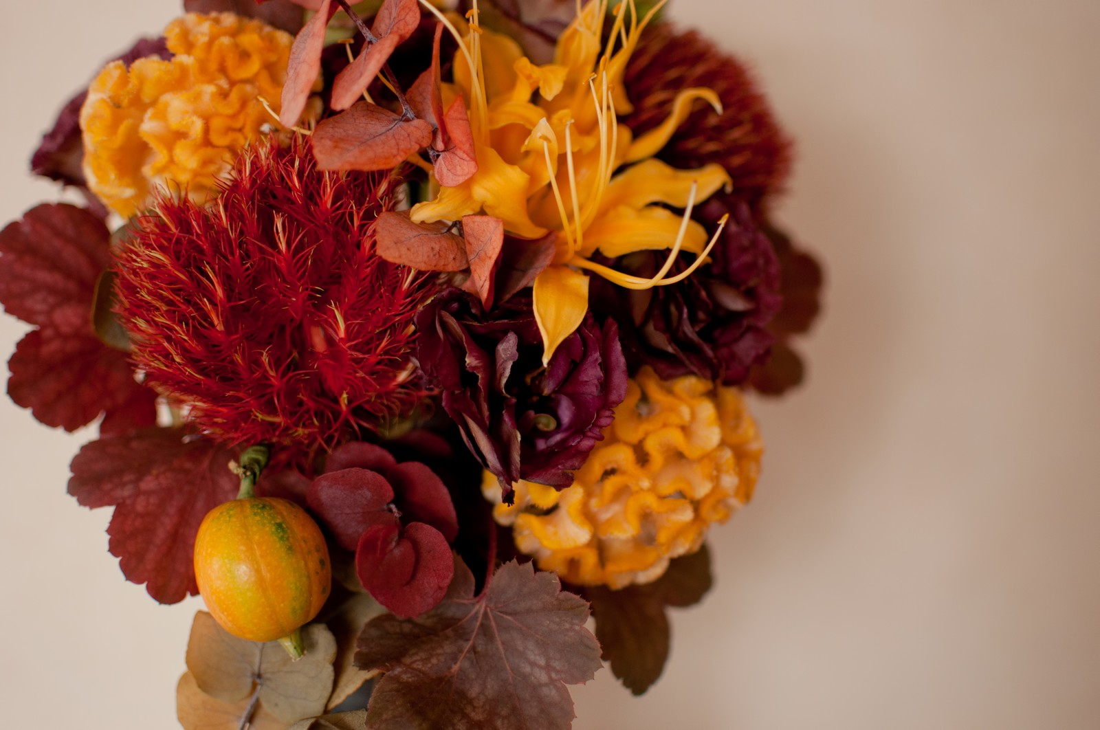 秋は金運が上がりやすい!色や食べ物で運気をアップさせよう