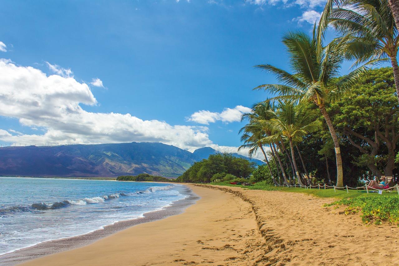 お土産にもピッタリ!ハワイの可愛い雑貨特集