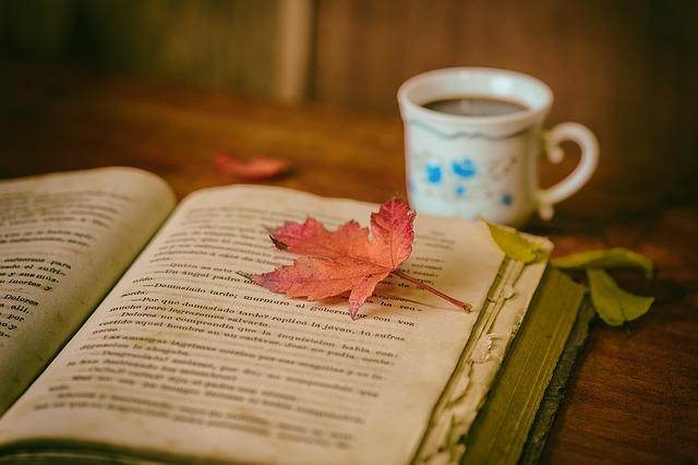 休日は本に囲まれていたい…おすすめブックカフェ3選